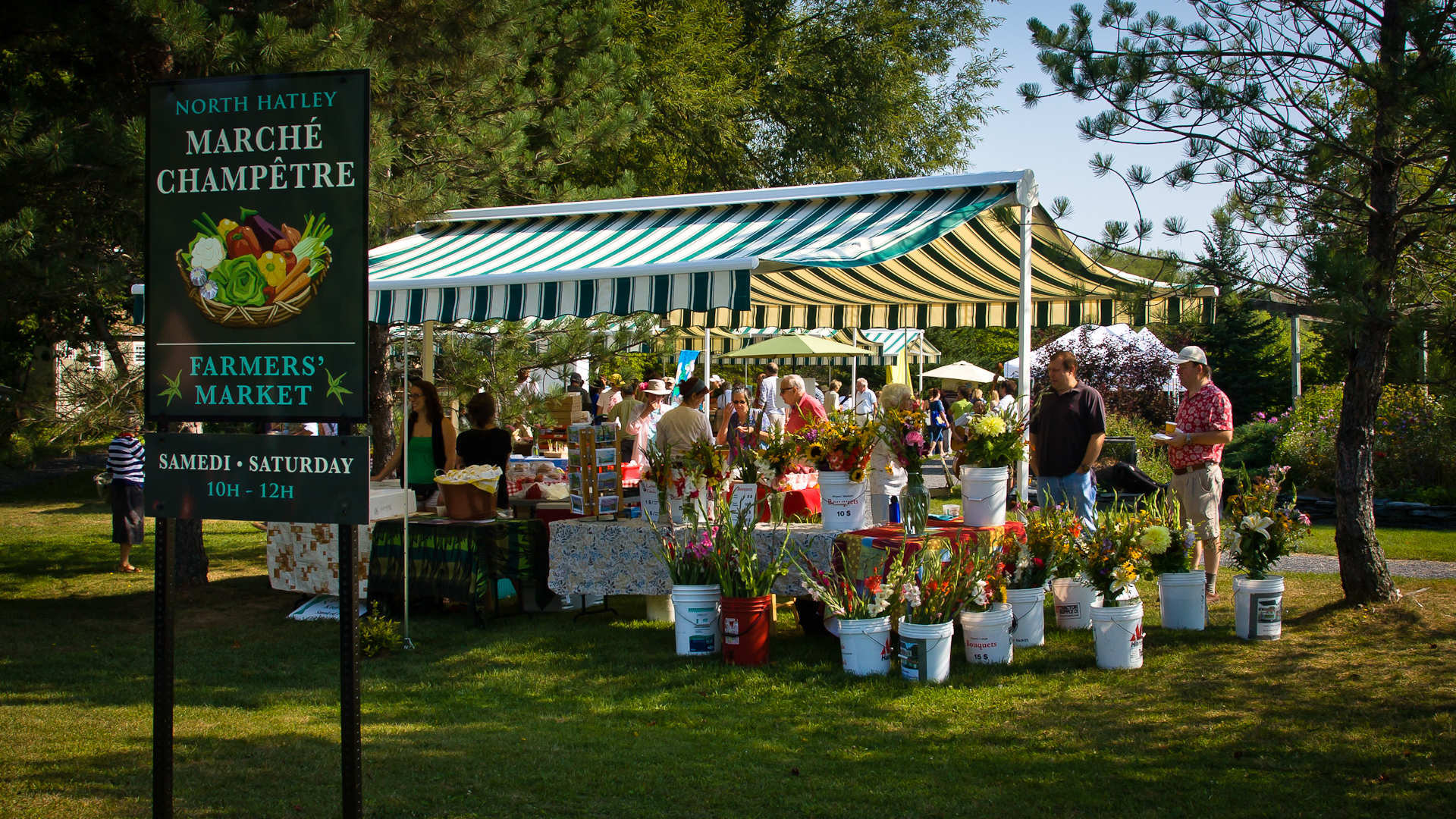 The North Hatley Farmers' Market Opens Next Saturday